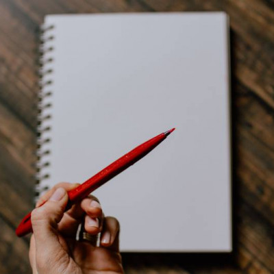 Red pen, Review