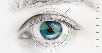 Eye, Biometrics