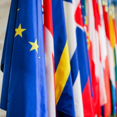 EU Member States flags