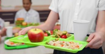 Children at school lunch
